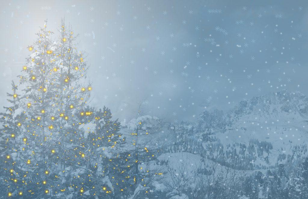 Frohe Weihnachten - Saisongeschäft auf gutshausblog.de